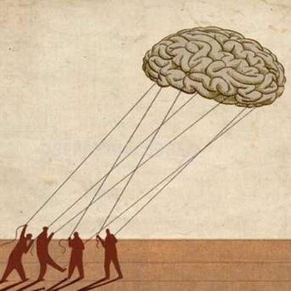 «Caccia ai cervelli con le cattedre Natta»